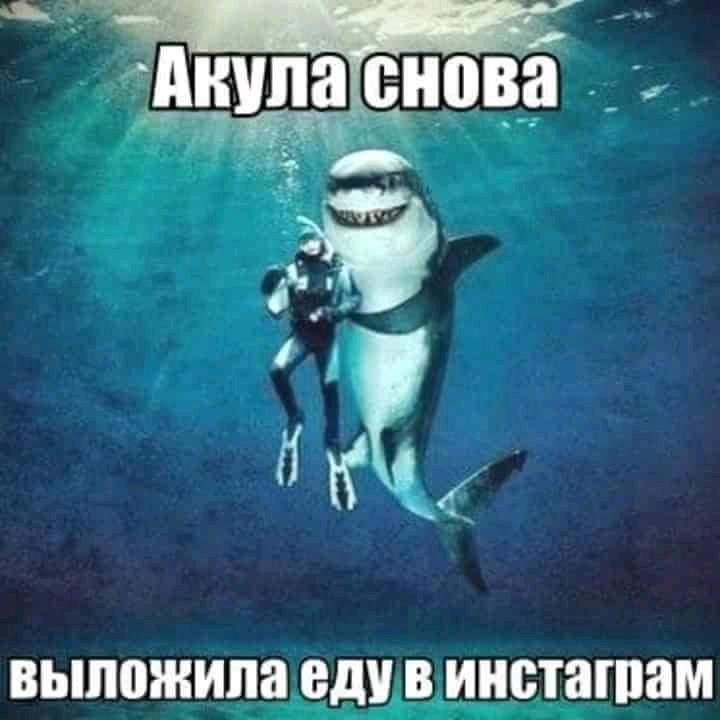 FB_IMG_15366568008737340.jpg